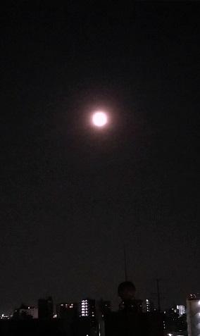 満月の遠隔、ご感想頂きました。