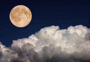 満月の遠隔ヒーリングサークルのご感想頂きました。