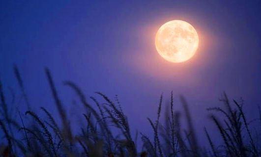 ご感想頂きました。満月の遠隔~