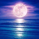 満月の遠隔~のご感想いただきました。