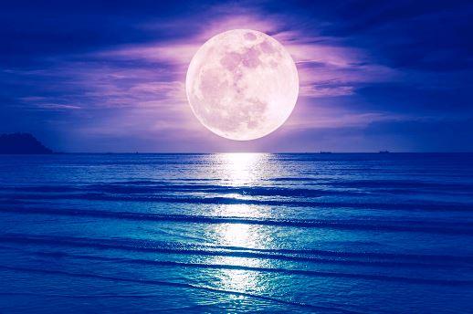 満月の遠隔ヒーリングサークルのご感想。