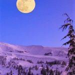 満月の遠隔ヒーリングサークル1/28~29